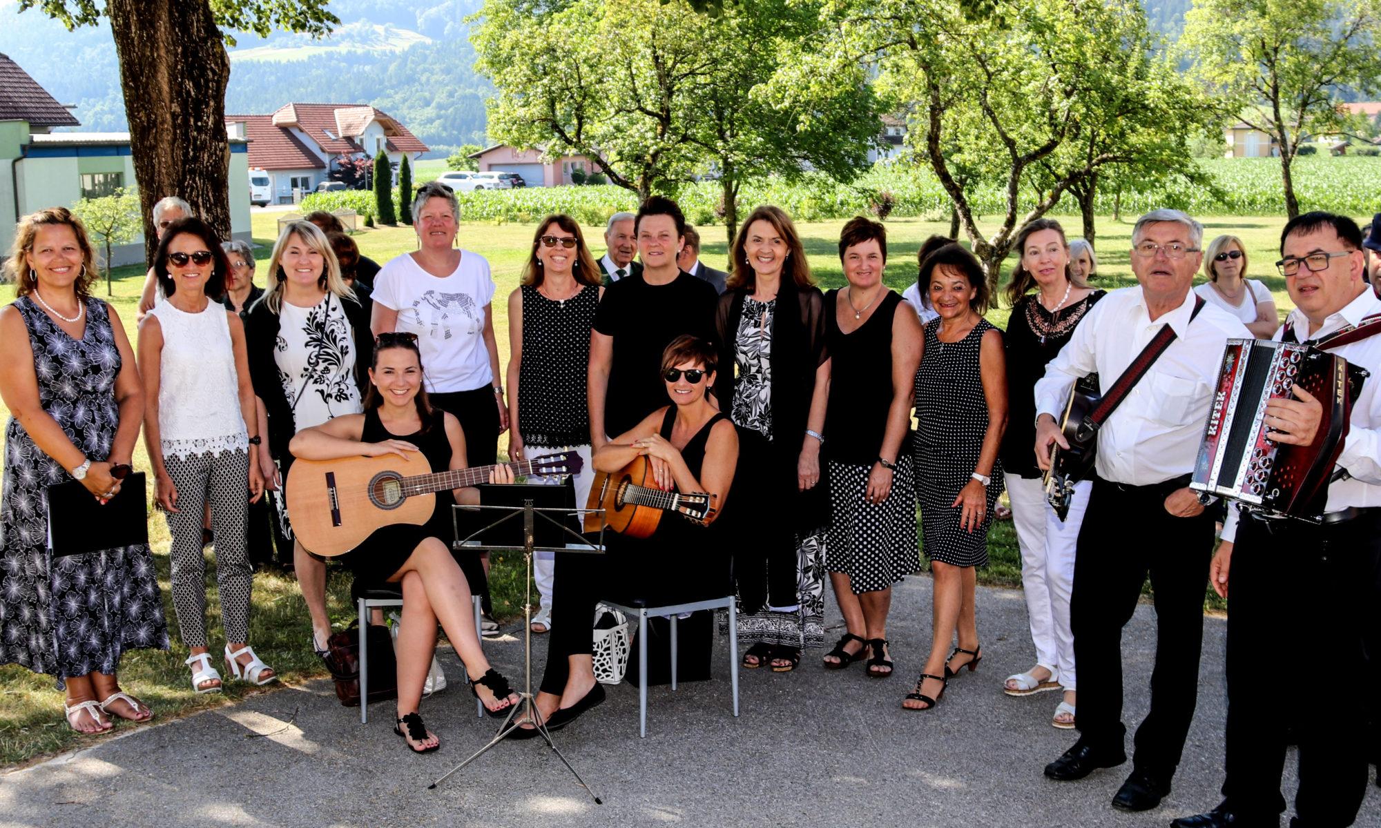 Bildergebnis für pevsko instrumentalna skupina